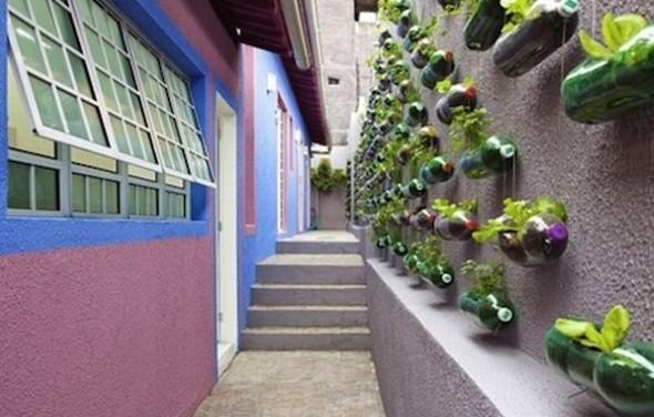 Jardim caseiro em espaço pequeno 003