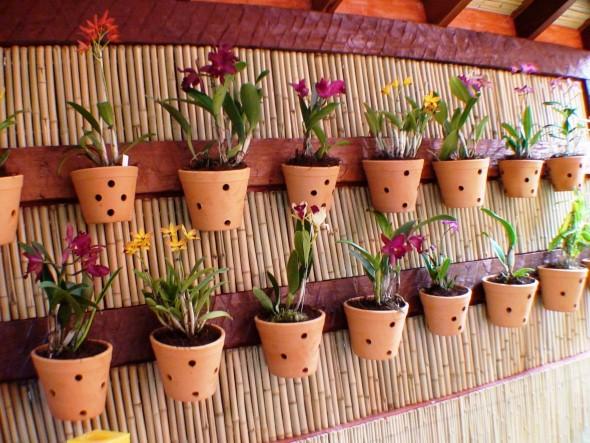 horta e jardim livro : horta e jardim livro:Mais alguns modelos de jardim caseiro em espaço pequeno