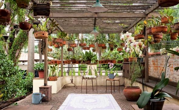 Jardim caseiro em espaço pequeno 005