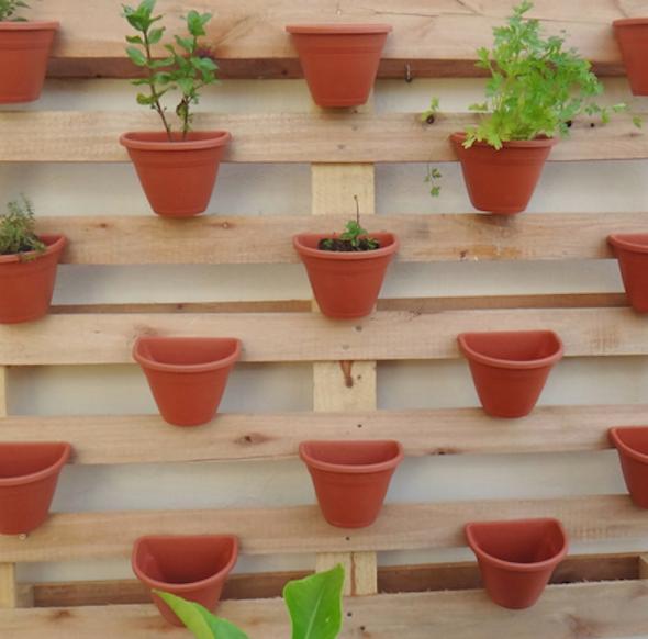 horta e jardim juntos:Olha que criativo a sapateira virou um pequeno jardim suspenso