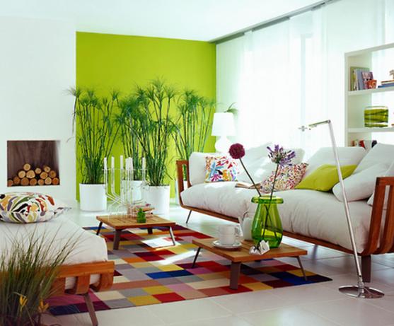 sala com parede com cor
