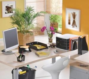 Decorar consultório ou escritório com plantas 004