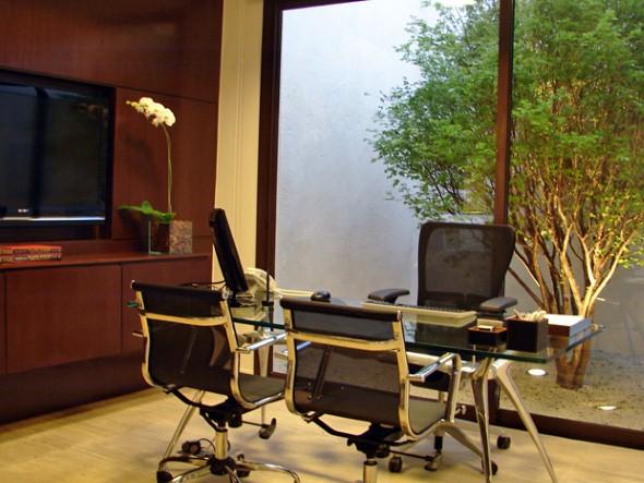 Decorar consultório ou escritório com plantas 013