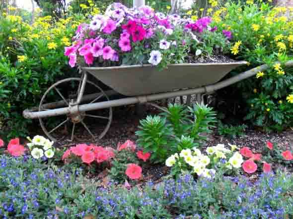 Carrinho de mão na decoração do jardim 018