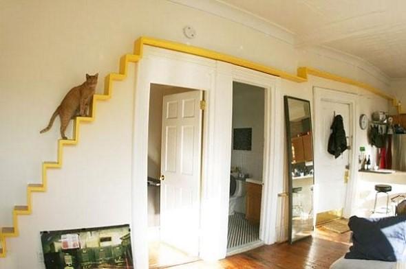 Escadas para gatos nas paredes 001