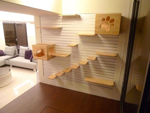 Escadas para gatos nas paredes 005