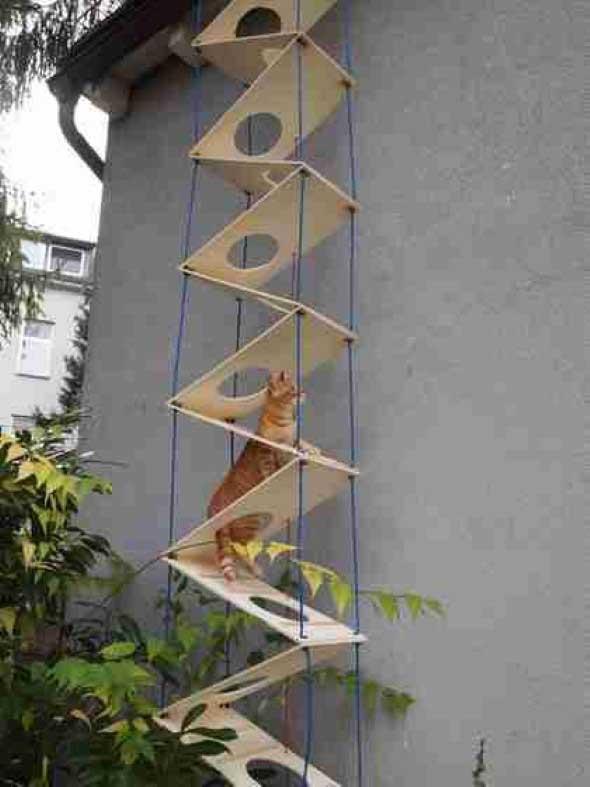 Escadas para gatos nas paredes 011