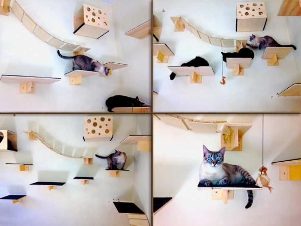 Escadas para gatos nas paredes 016