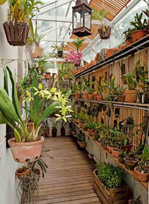 Jardim vertical no corredor 005