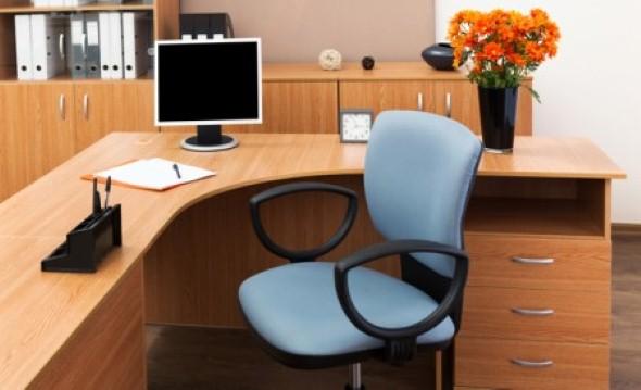 Decorar consultório ou escritório com plantas 006