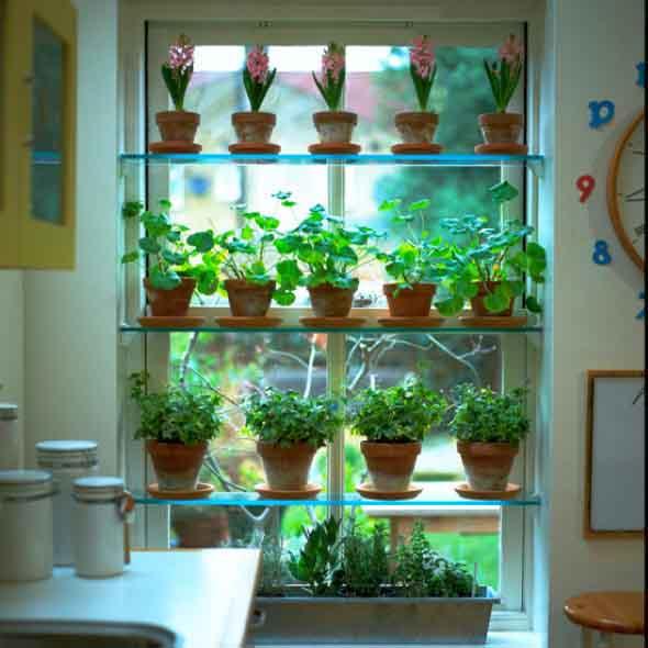 Jardins verticais para decorar casas e apartamentos 011
