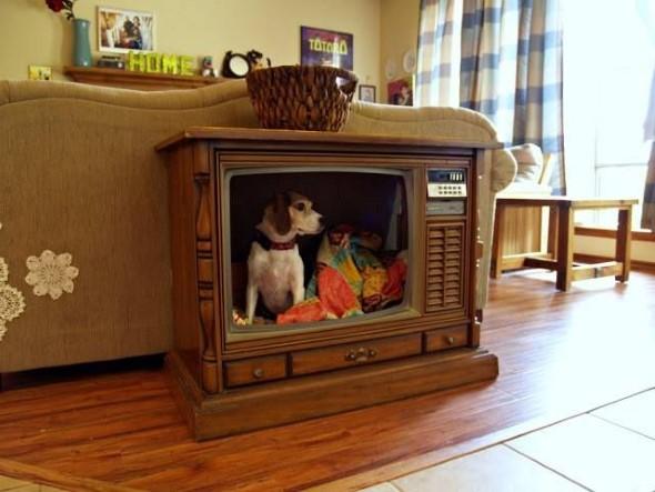 O que fazer com a televisão velha 004