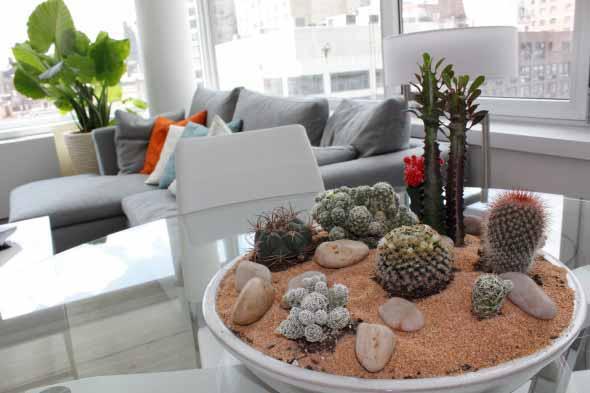 Como ter um jardim na sala de estar 002