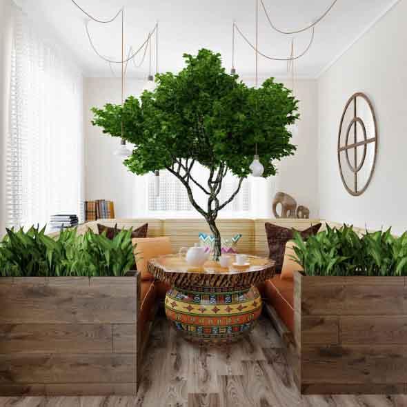 Como ter um jardim na sala de estar 011