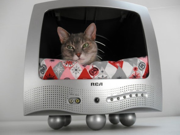 Cama artesanal para PET 007