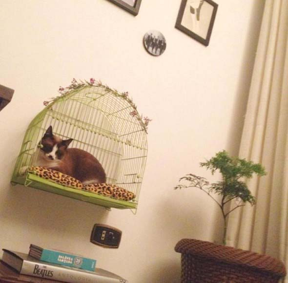 Cama artesanal para PET 018