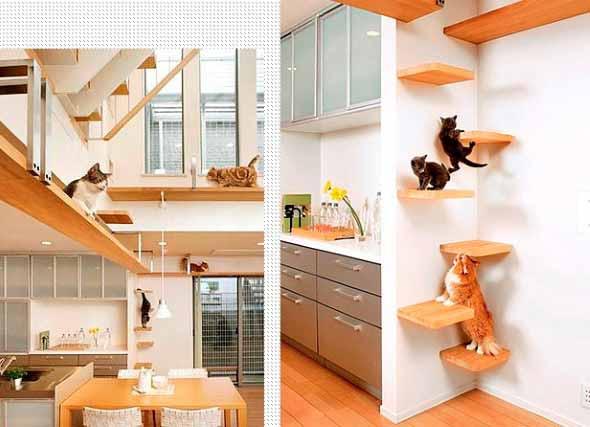 Escadas para gatos nas paredes 003