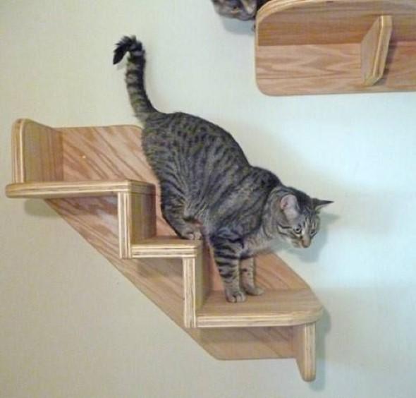 Escadas para gatos nas paredes 012