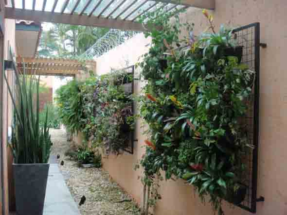 Jardim vertical no corredor 003